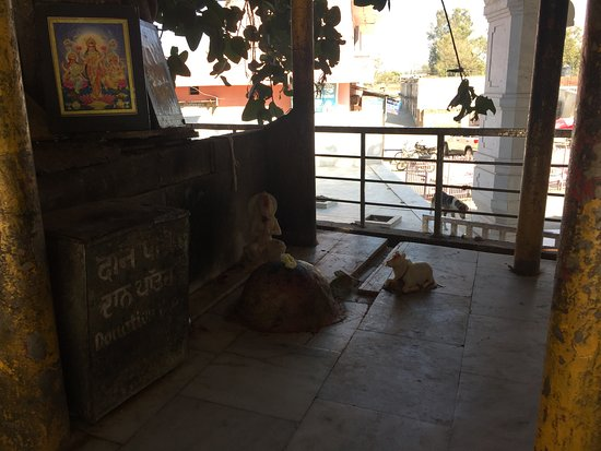 Jyotisar Birthplace of Bhagavad Gita : Donation boxes have also been placed