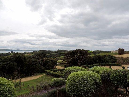 جزيرة واهيكي, نيوزيلندا: waiheke