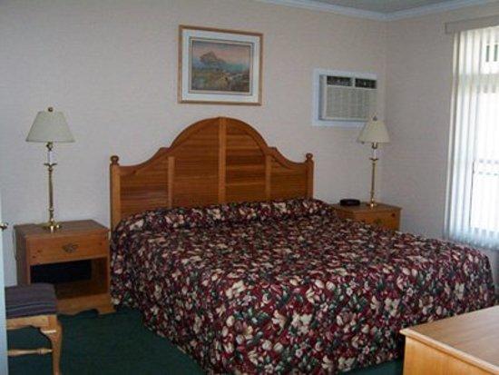 Bellaire, MI: Guest room