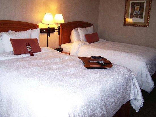 Hampton Inn by Hilton Saltillo Airport Area: Guest room