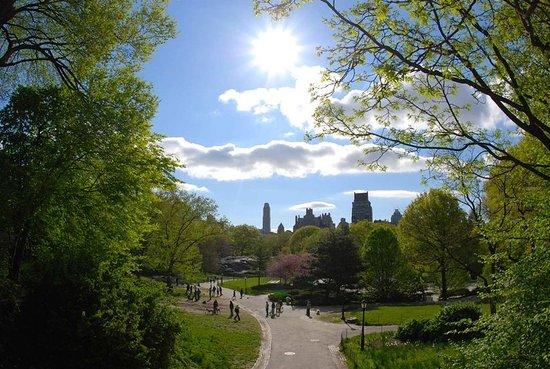 Ridgefield Park, NJ: Other