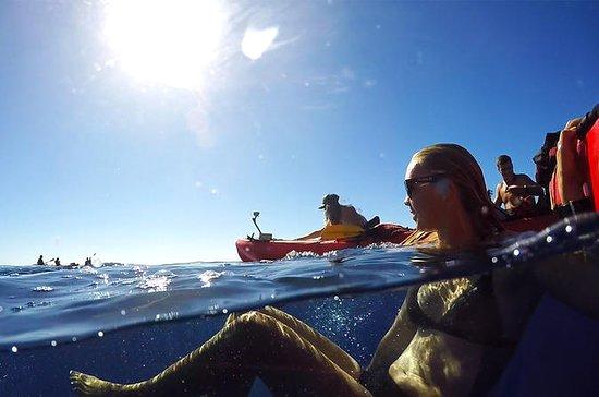 Kauai South Shore Sea Kayak Adventure