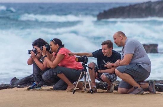 Oahu Circle Island Sunrise Photo Tour