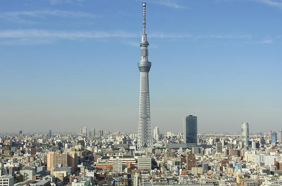 Tokyo Full-Day Sightseeing Tour by Coach with Lunch Option