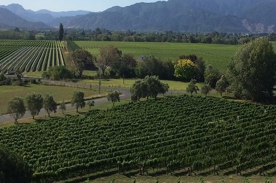 Marlborough Gourmet Tasting Tour