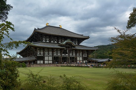 Private Kyoto and Nara Tour with a...