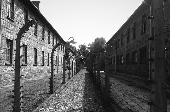 Auschwitz-Birkenau Memorial EXTENDED Guided Tour w Private Transfers...
