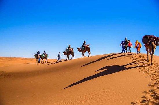 3-daagse desert tour naar Merzouga ...