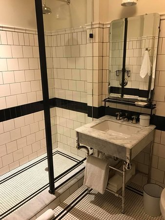 Chicago Athletic Ociation Hotel European Style Shower