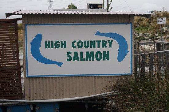 Twizel, New Zealand: Main signboard