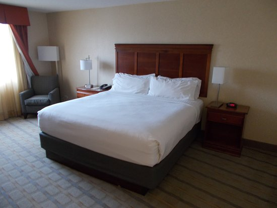 Holiday Inn Dallas Market Center Room