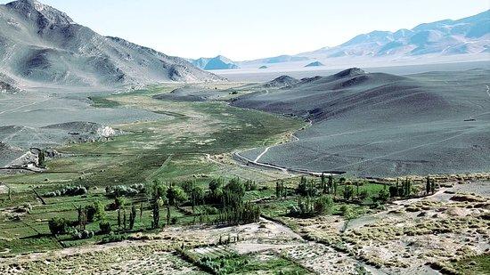 El Penon, Αργεντινή: Una ricca vena d'acqua assicura la vita e la vegetazione a El Peñon, a 3500 metri sul mare
