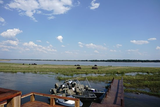 Lower Zambezi National Park照片
