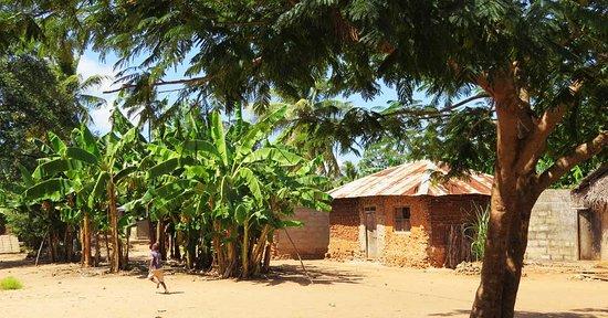 Jambiani, Tanzania: Uzi Island- untouched by tourism