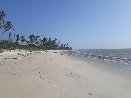 Saadani National Park Foto