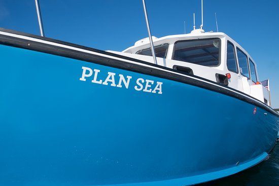 ‪Plan Sea Adventures Boat Charters‬