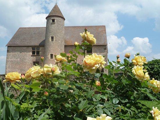 Saint-Menoux, Francja: jardin