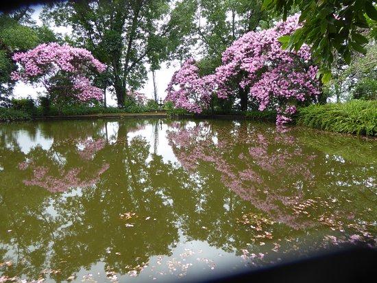 Kings Walden Garden Manor Aufnahme