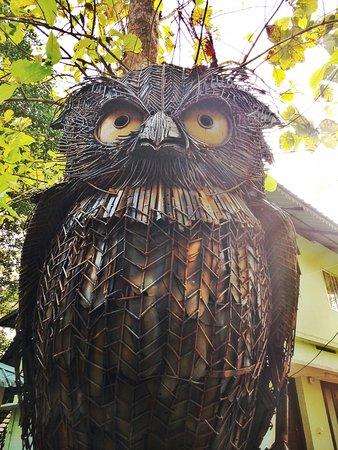 Salim Ali Bird Sanctuary: A majestic Owl sculpture greets you at the sanctuary!