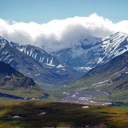 Denali Denali National Park And Preserve All You Need
