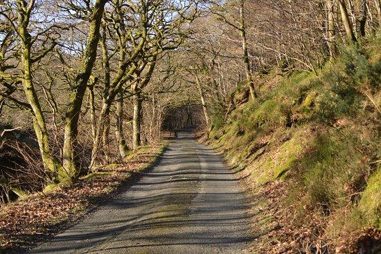 Cumbria, UK: Bassenthwaite Lanes
