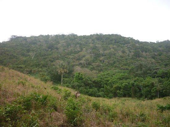 Sucre Department, Colombia: Montes de María en el departamento de Sucre 5