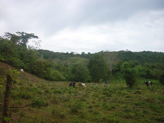 Sucre Department, Colombia: Montes de María en el departamento de Sucre 6