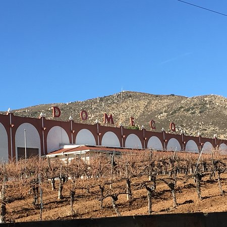Casa Pedro Domecq