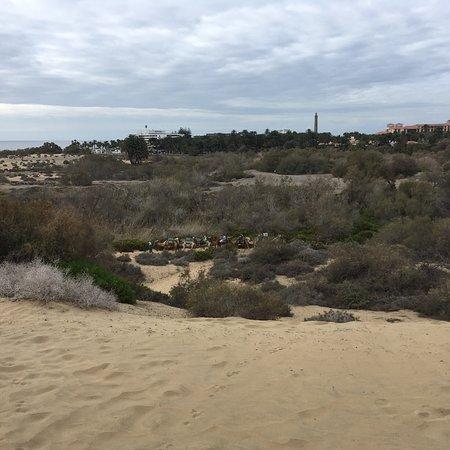 Playa de Maspalomas: photo1.jpg