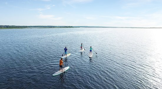 Take a paddleboard tour through North Myrtle Beach's beautiful waterways.