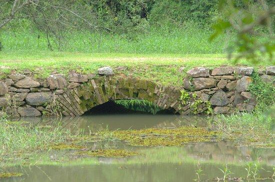 Rio Claro: ponte