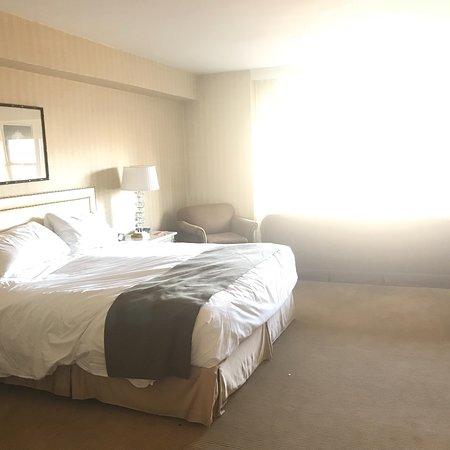 Views , room 1404 park view suite