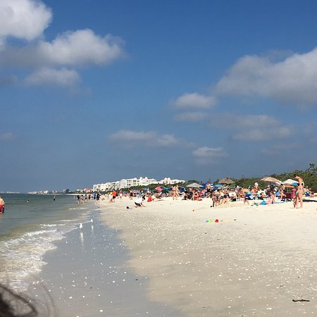 Barefoot Beach Preserve : photo1.jpg