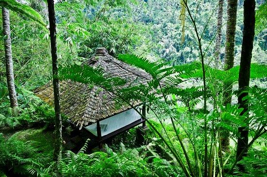 COMO Shambhala Estate, Bali: Exterior