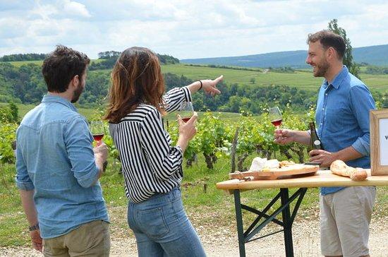 Recorrido vinícola con todo incluido...