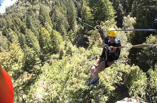 Private Horseback Ride and Zip Line