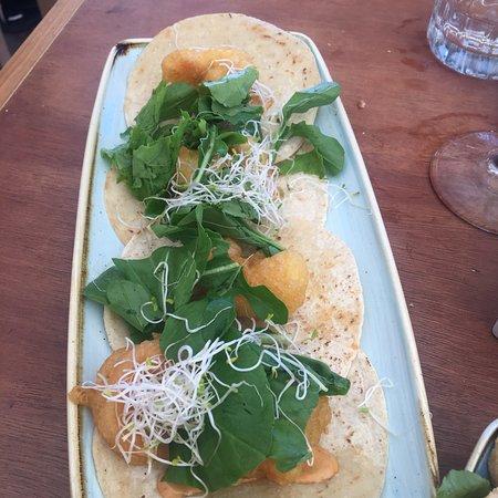 Negroamaro : Frittura e tacos