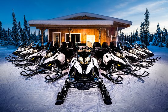 ‪‪Fairbanks‬, ‪Alaska‬: New luxury snowmobiles lined up ready for your tour.‬