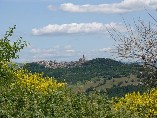 Ab OVO Gallery : Todi in Umbria, Italy