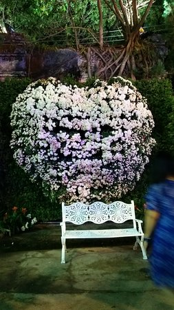 Wiang, Thailand: love with white flowers