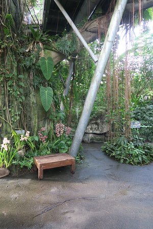 Cleveland Botanical Garden All You Need To Know Before You Go Updated 2018 Oh Tripadvisor