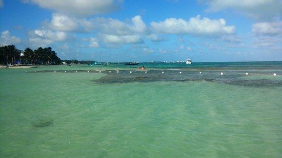 Rocky Cay : Dentro da água