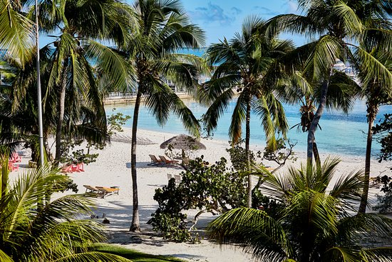 Landscape - Picture of Abaco Beach Resort and Boat Harbour Marina, Great Abaco Island - Tripadvisor