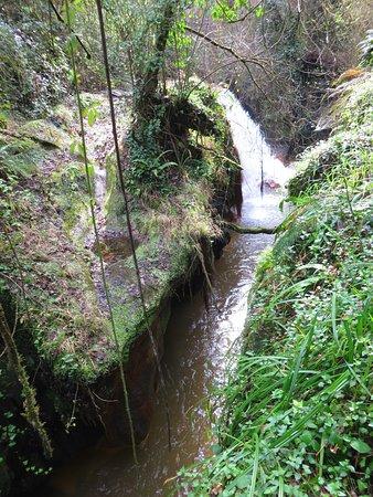 Cascate Dell'Acquarossa: il fosso dell'acquarossa e in fondo la cascata