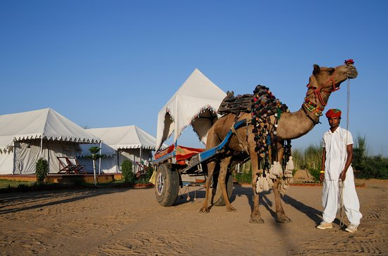 Pushkar Camel Safari