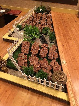 Indoor Mushroom Garden Indoor mushroom garden picture of da tang zhen wei restaurant da tang zhen wei restaurant indoor mushroom garden workwithnaturefo