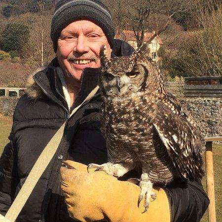 Exmoor Owl & Hawk Centre: photo0.jpg
