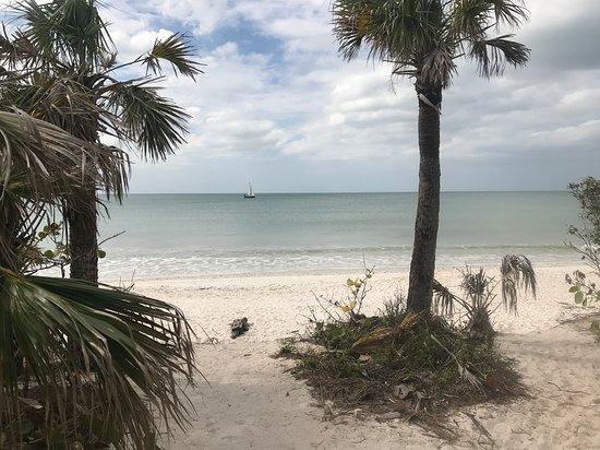 Barefoot Beach Preserve Photo