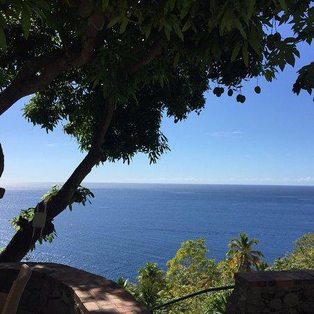 The Mango Tree: Sehr schöne Aussicht...das essen lecker und günstig...und man bekommt auch endlich mal einen Sal