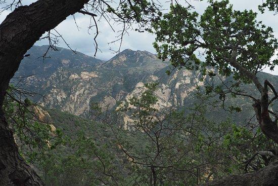Gaviota State Park照片